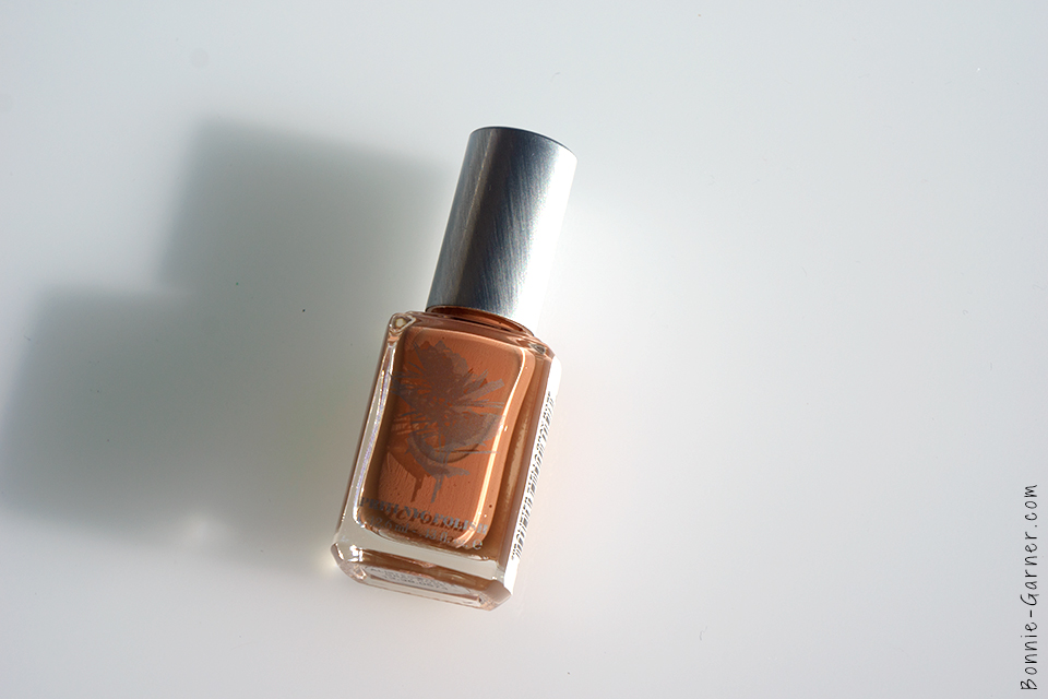 priti_nyc_nail_polish_alister_stella_gray_rose