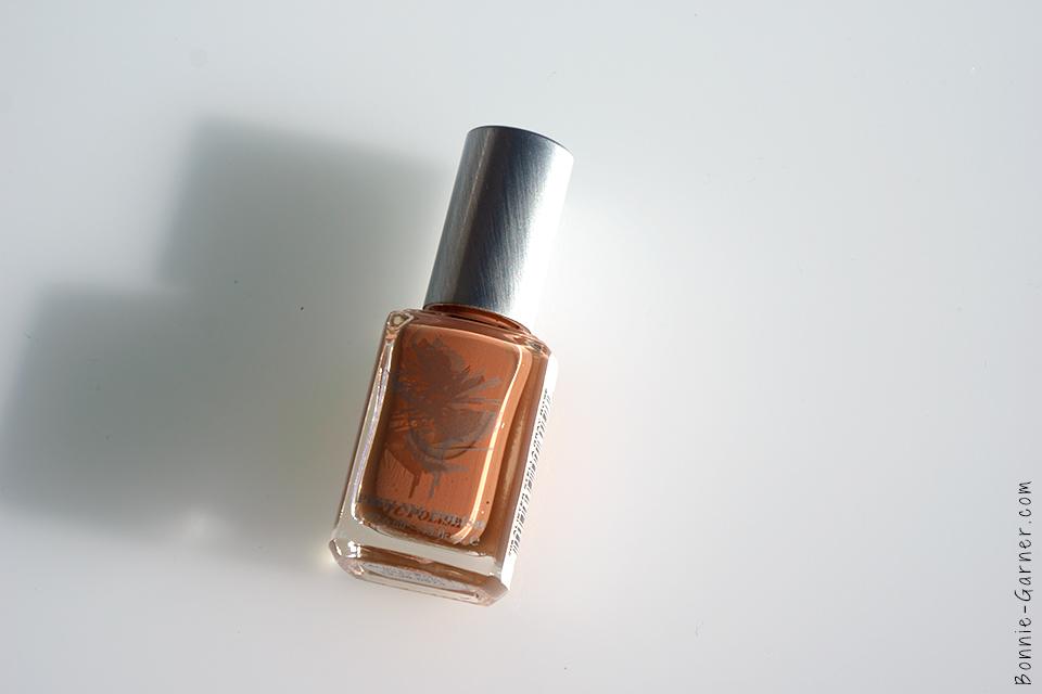 priti_nyc_nail_polish_alister_stella_gray_rose