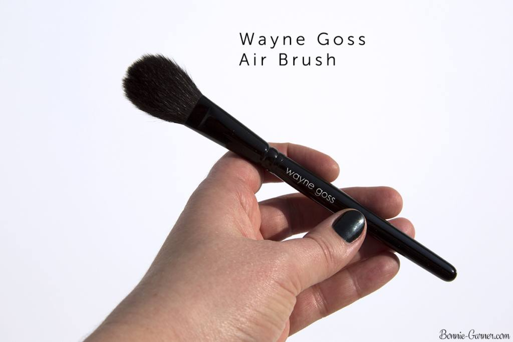 Wayne Goss The Air-Brush