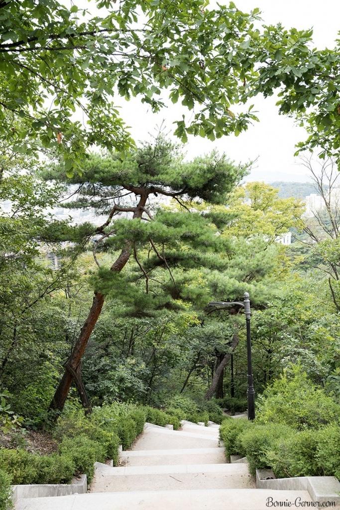 Namsan Park Seoul South Korea